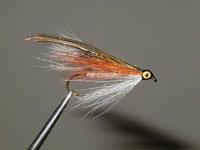little-brown-trout